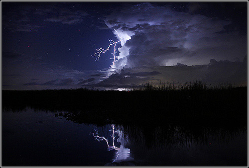 LightningFL1