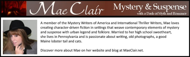 BOOK COVER REVEAL PROMO BANNER MAE CLAIR
